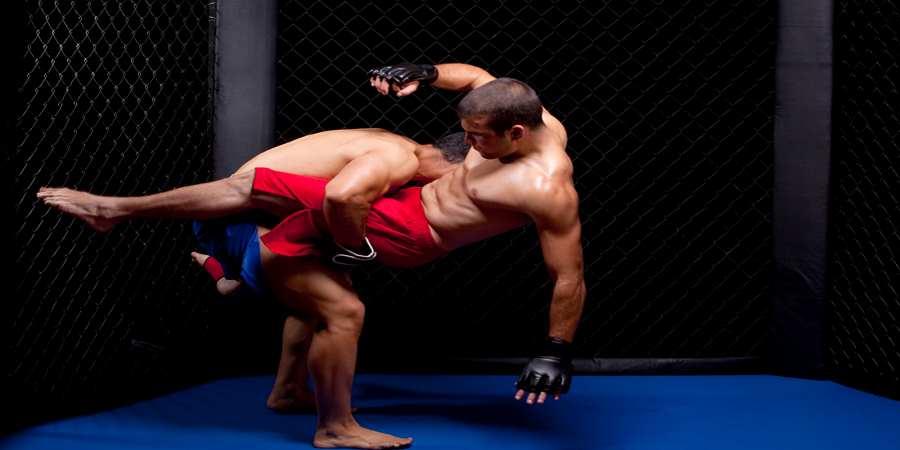 MMA Training 2 guys